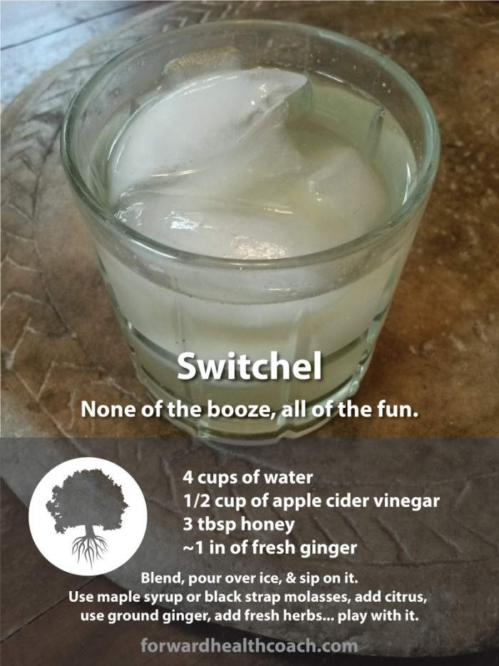 Switchel, none of the booze, all of the fun.